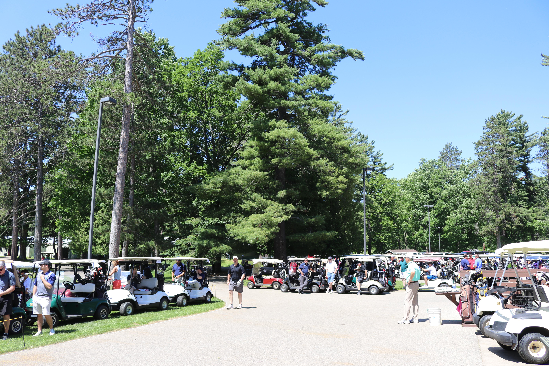 Golf Carts 2